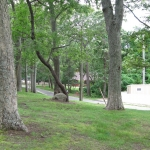 view-from-rec-hall-toward-beach-trail