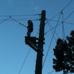 high-ropes-7