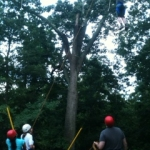 high-ropes-8